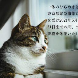 東京都緊急事態宣言延長に伴う休業要請を受け、5月12日より臨時休業のお知らせ