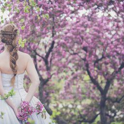 【桜のかほり】先着3名様!3・23完全1DAY企画。レア天然精油を纏う